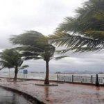 نصائح لقيادة السيارة بأمان في ظل الرياح الشديدة